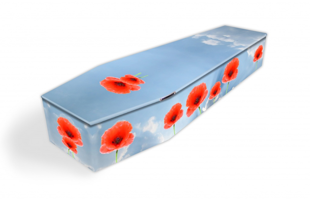 Poppies On Sky