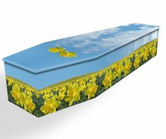 Field Of Daffodils Cardboard