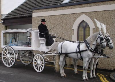 Hillier Horse Drawn Carriage