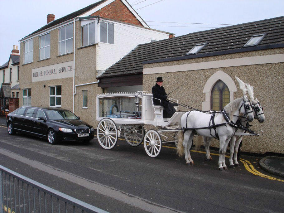 White Horse Drawn Hearse with Matching White Horses